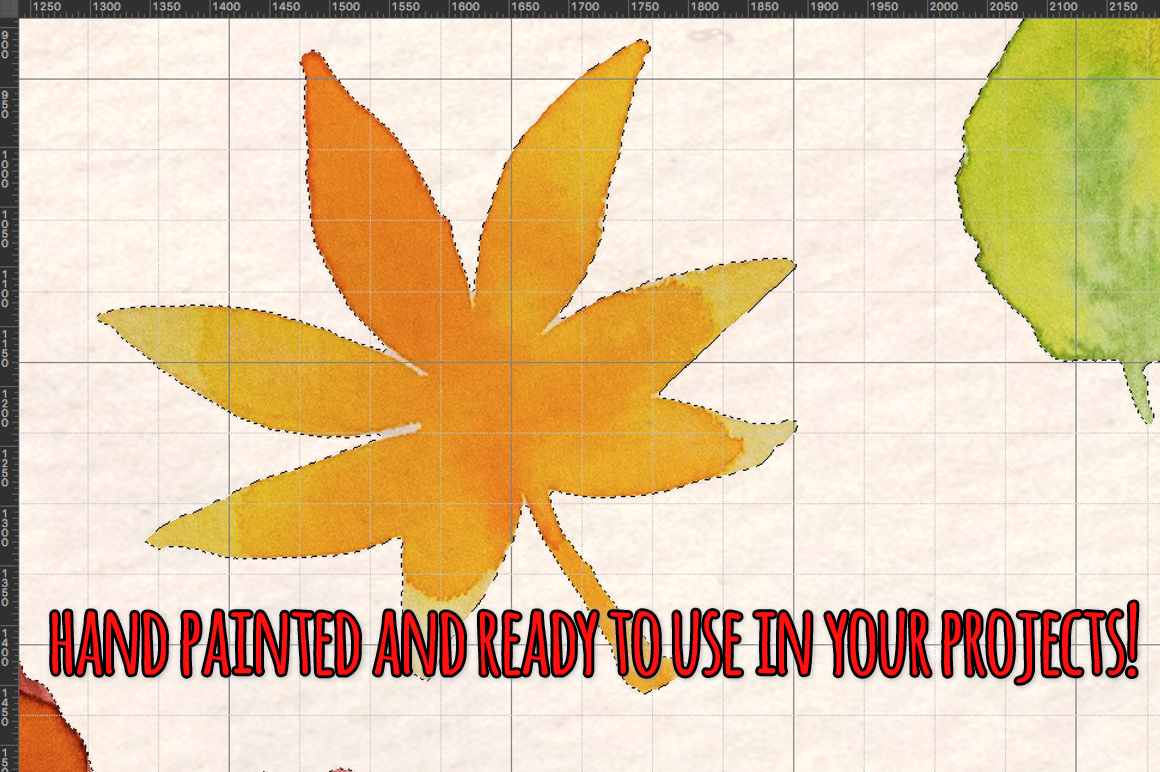 Autumn Leaves 37 Watercolor Elements example image 4