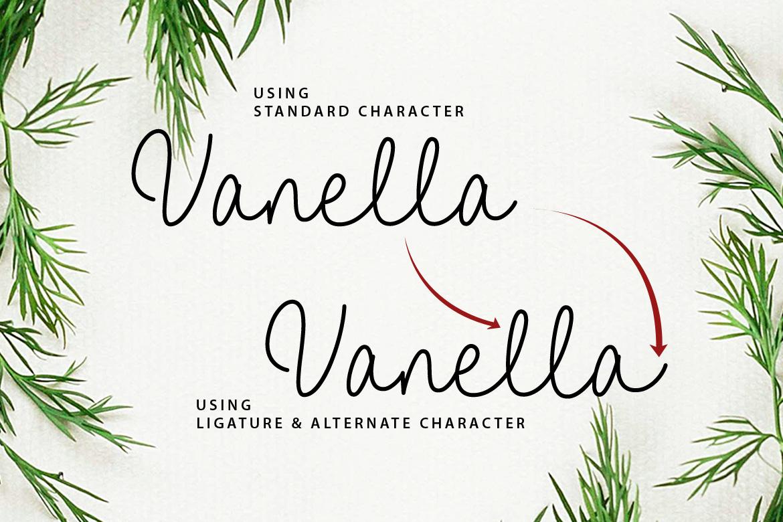 Vanella example image 15