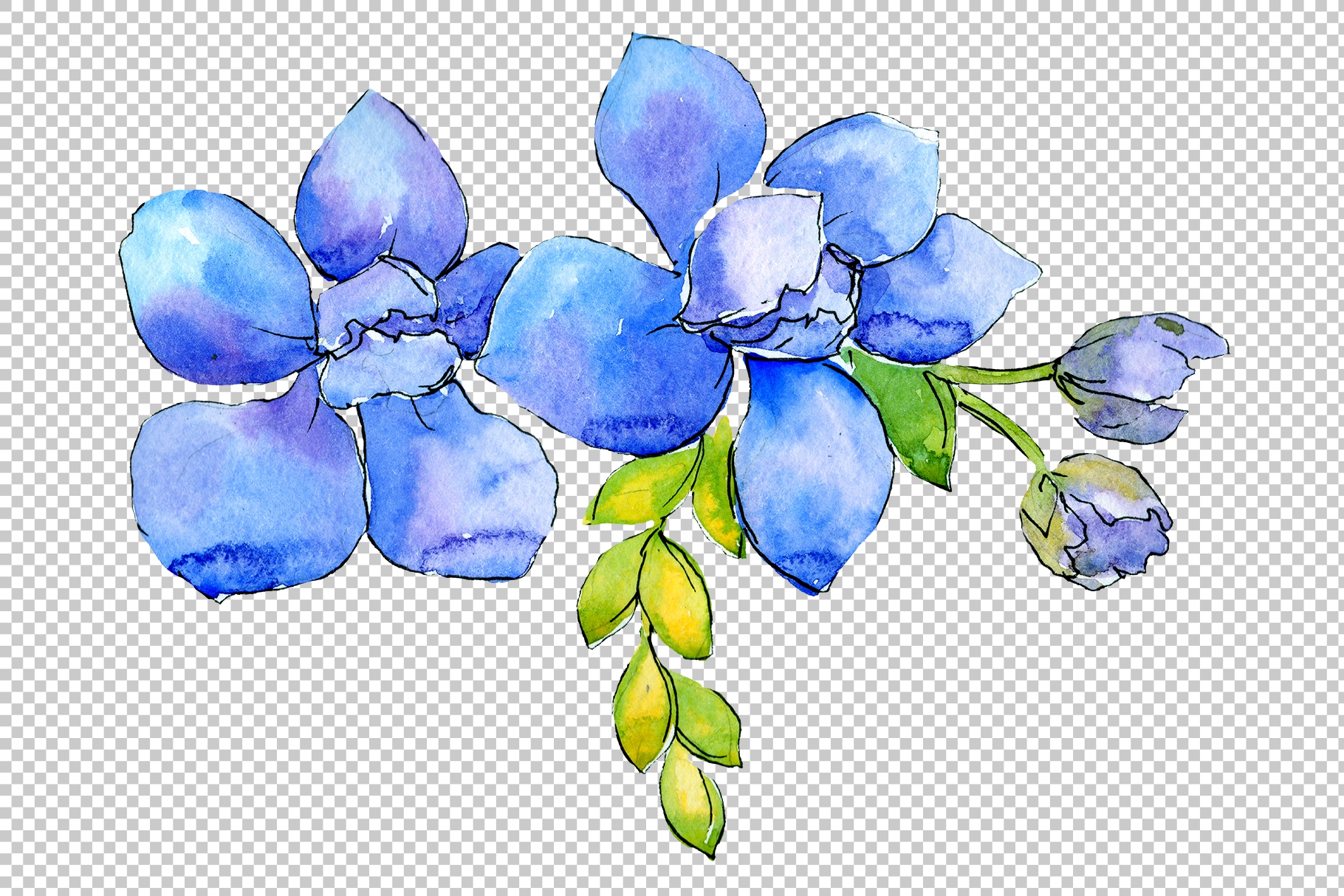 Flower composition PNG watercolor set example image 4
