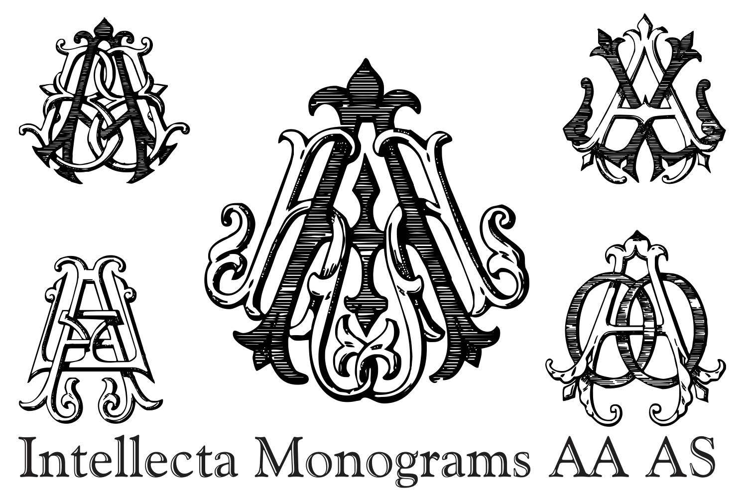 IntellectaMonograms AAAS example image 10