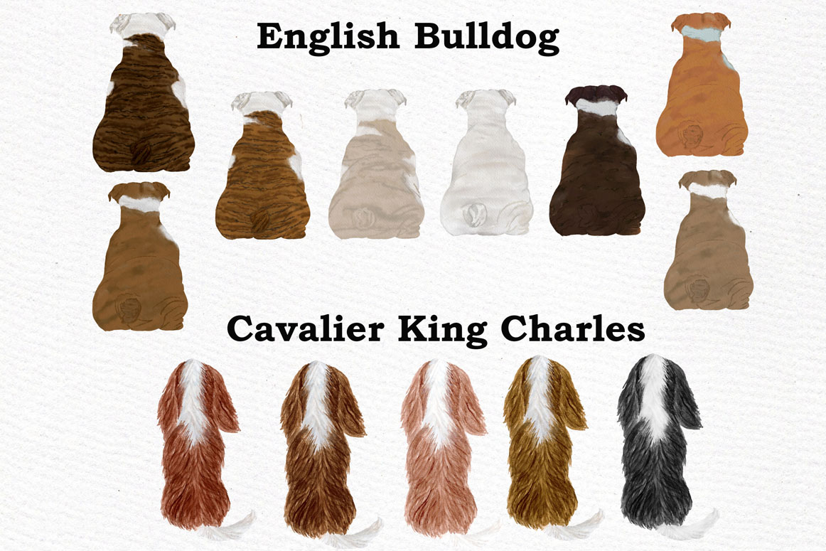 Dogs Clipart,Dog breeds Pet clipart,Watercolor dogs clipart example image 2