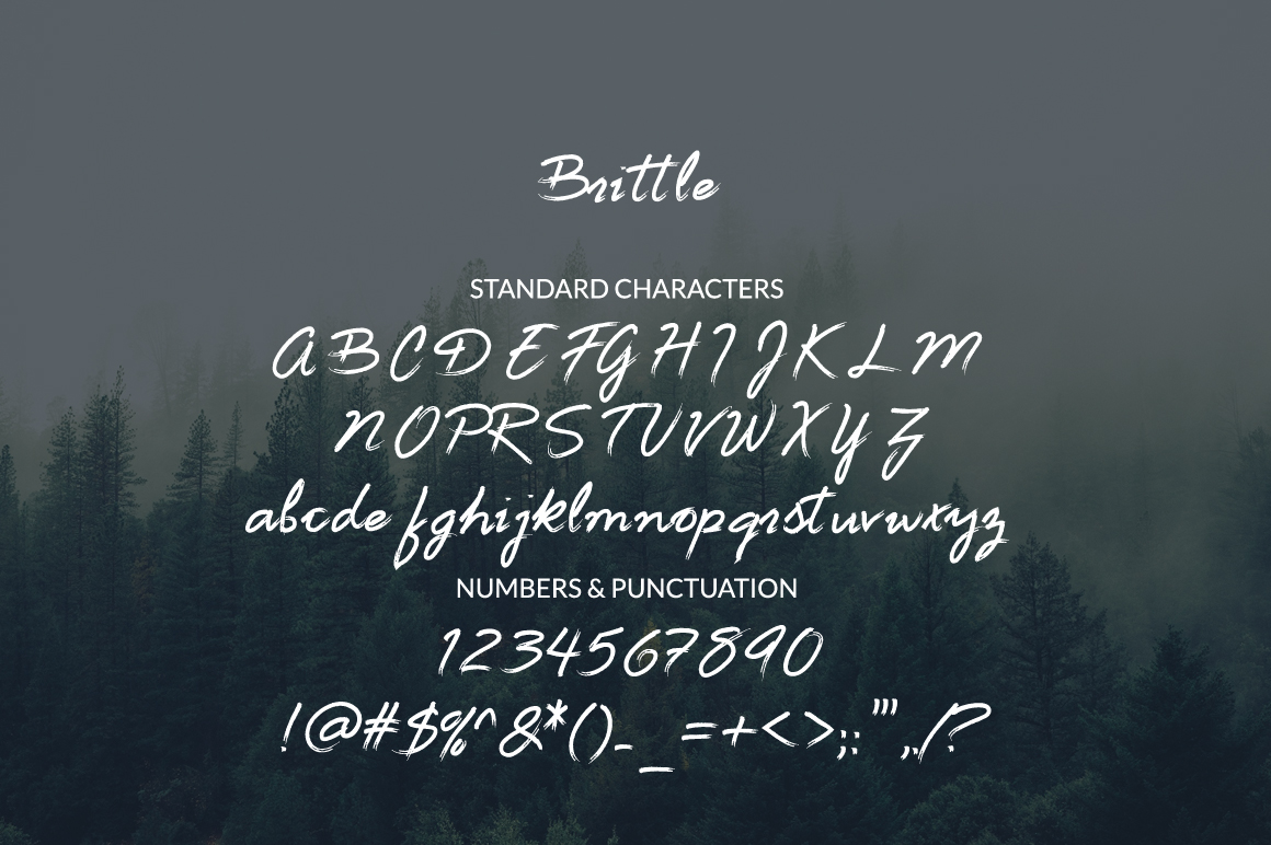 Brittle - a handwritten nature inspired font example image 7
