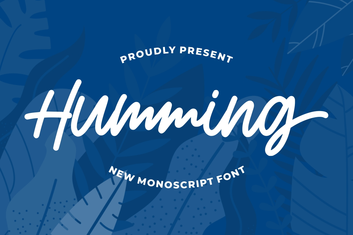 Humming - Monoscript Font example image 1