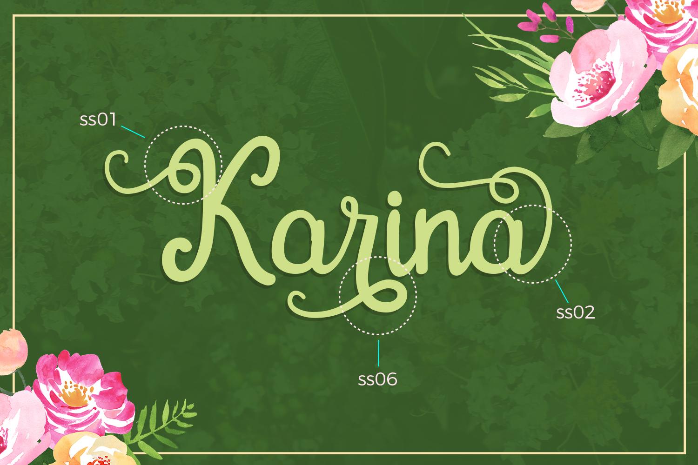 Gardena - Script Font example image 6