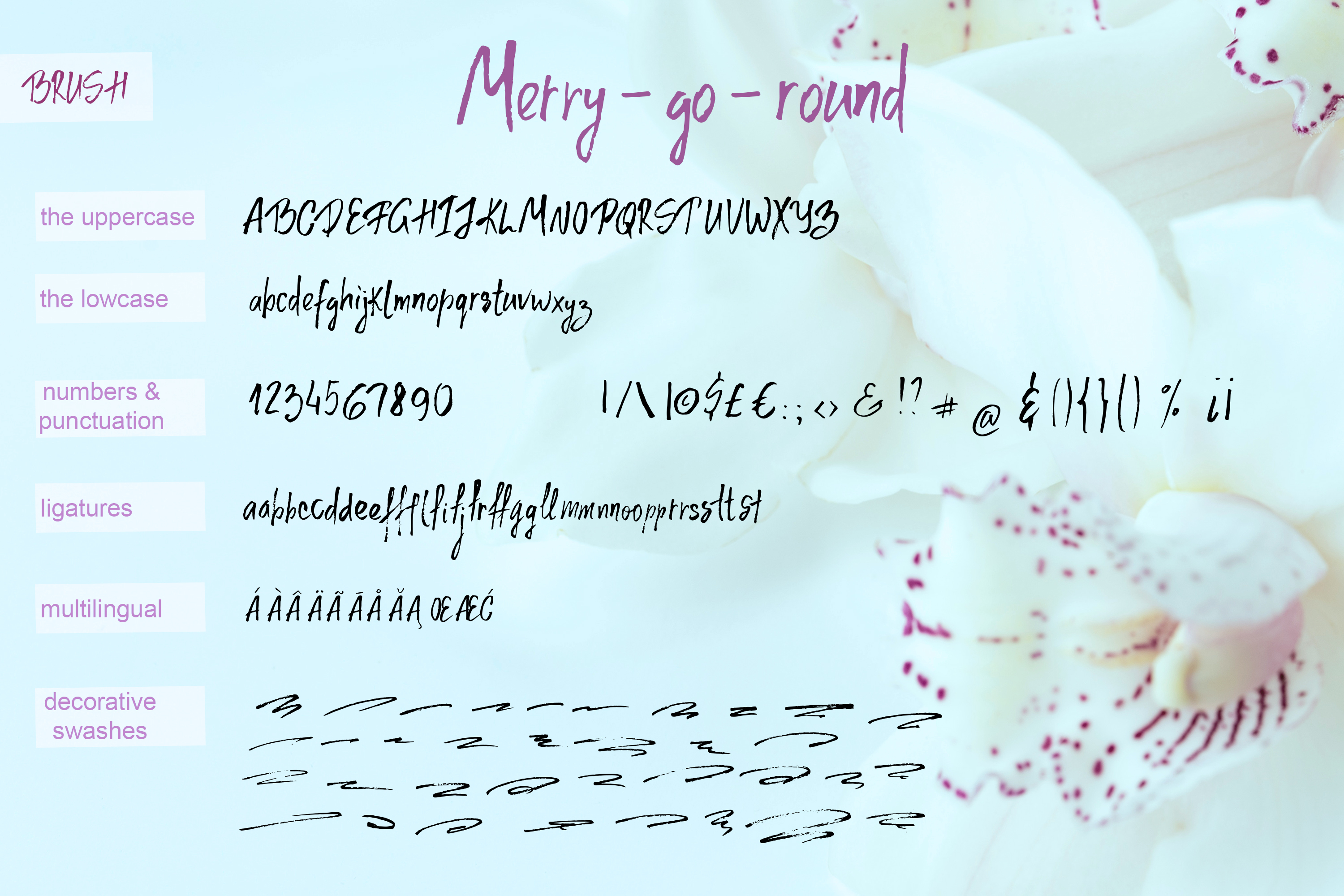 Merry go round Font Duo plus Extra swashes example image 11