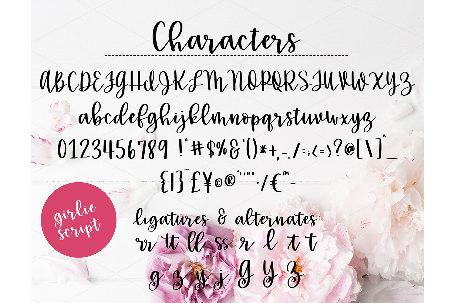 Handwritten Fonts bundle example image 5