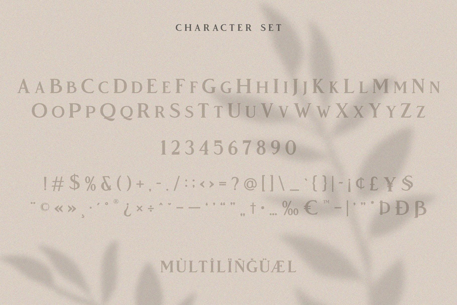 Vendeur - Elegant Serif Font example image 5