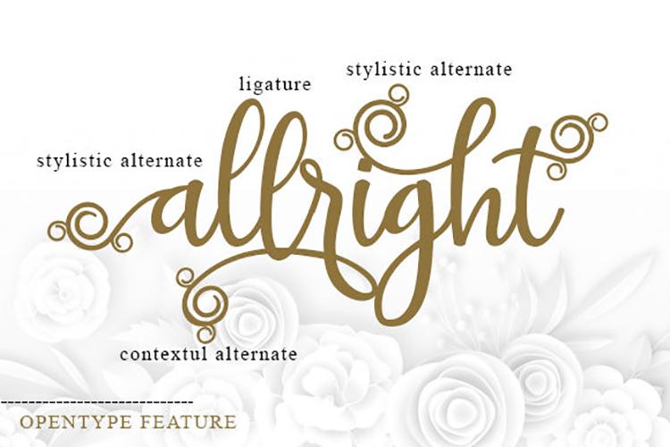 Britany Script Monogram Font example image 5