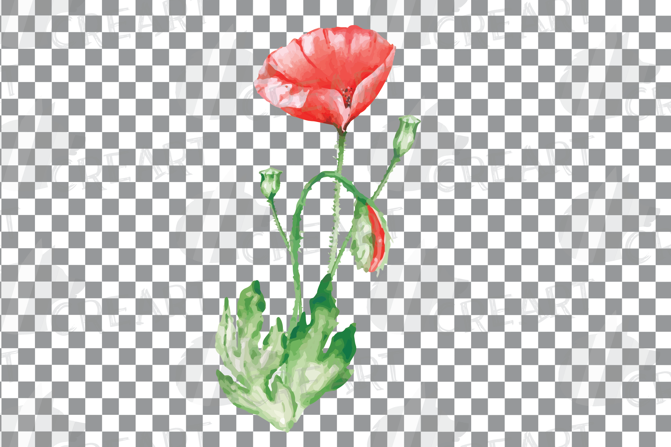 Watercolor red poppy flower and leaf decor clip art. Poppies example image 15