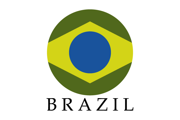Brazil flag example image 1