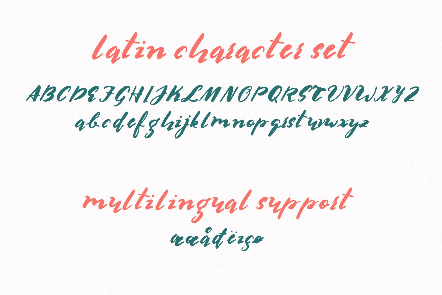 Multilingual Brush Font- Naquia Font example image 9