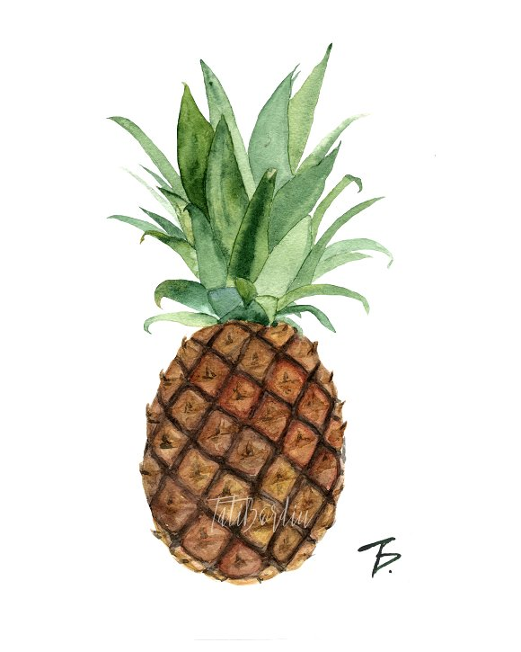 Watercolor Pineapple Clipart & Print example image 2