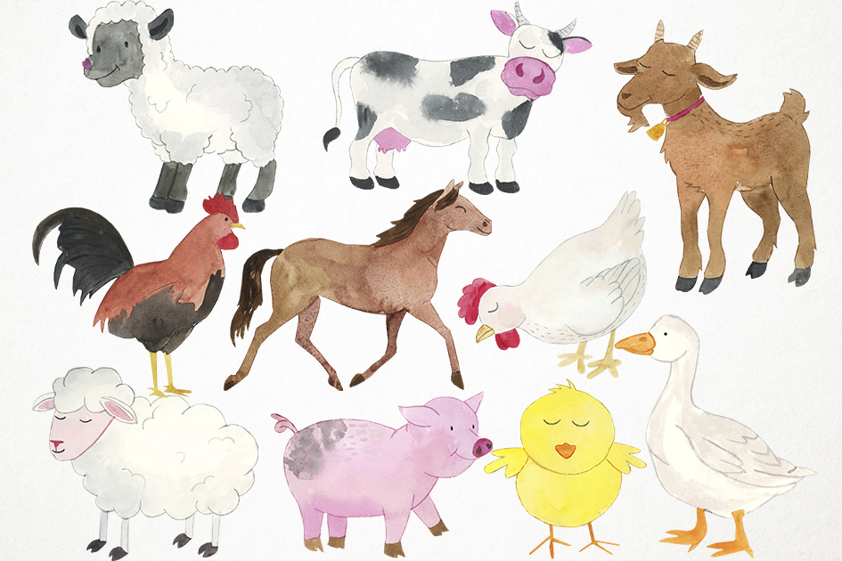 Watercolor Farm Animals Clipart, Farmyard Clipart, Animals example image 2