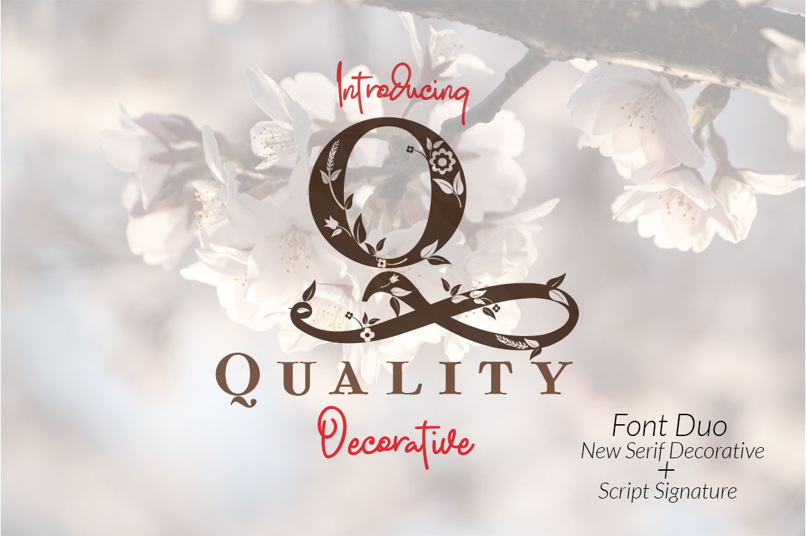Quality Decorative Font Duo example image 1