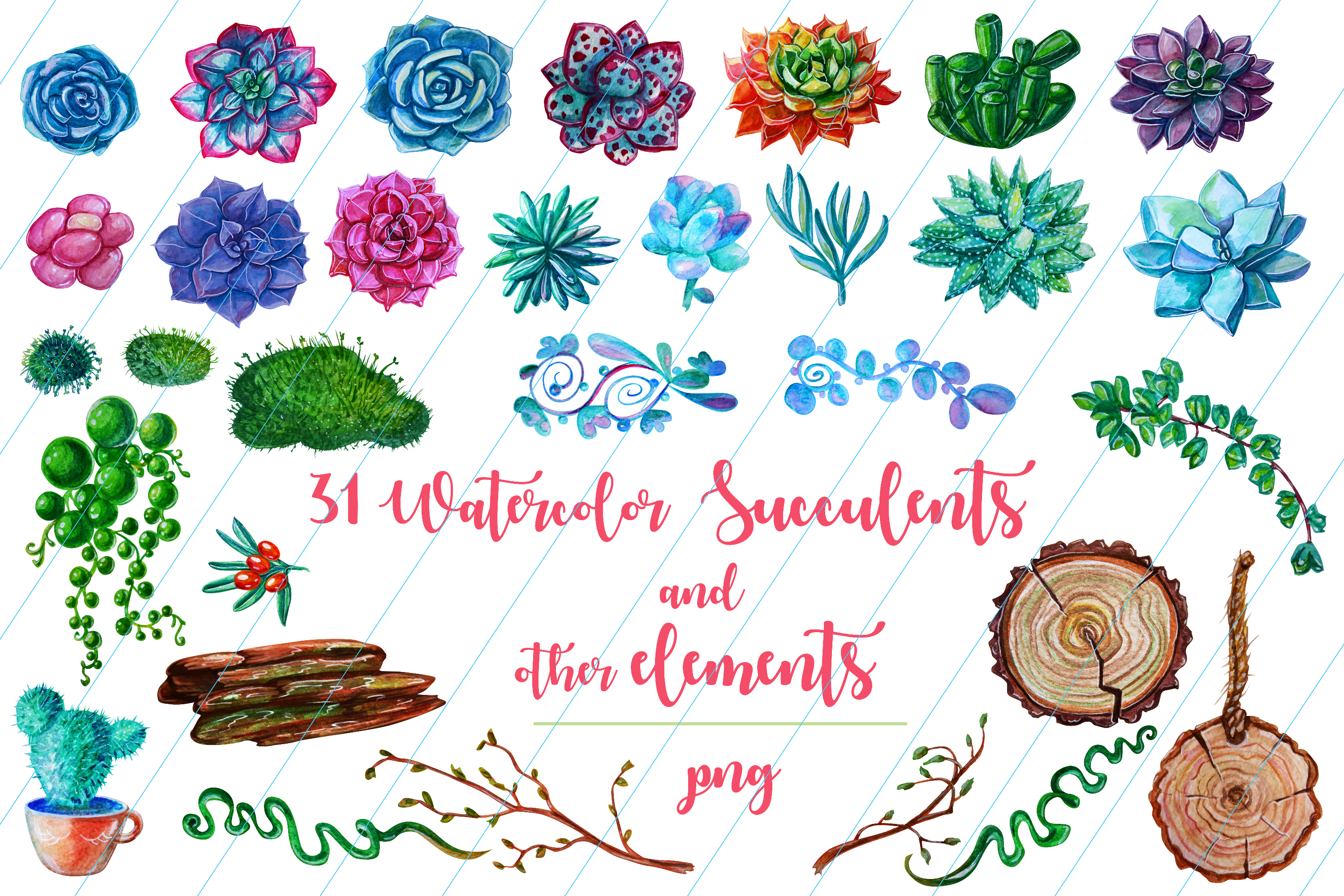 Watercolor Succulent Plants and other elements example image 7