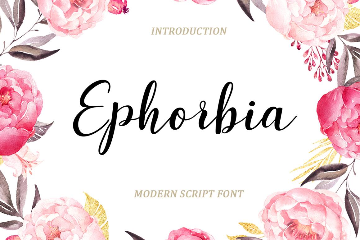 Modern Script Font Bundle example image 5