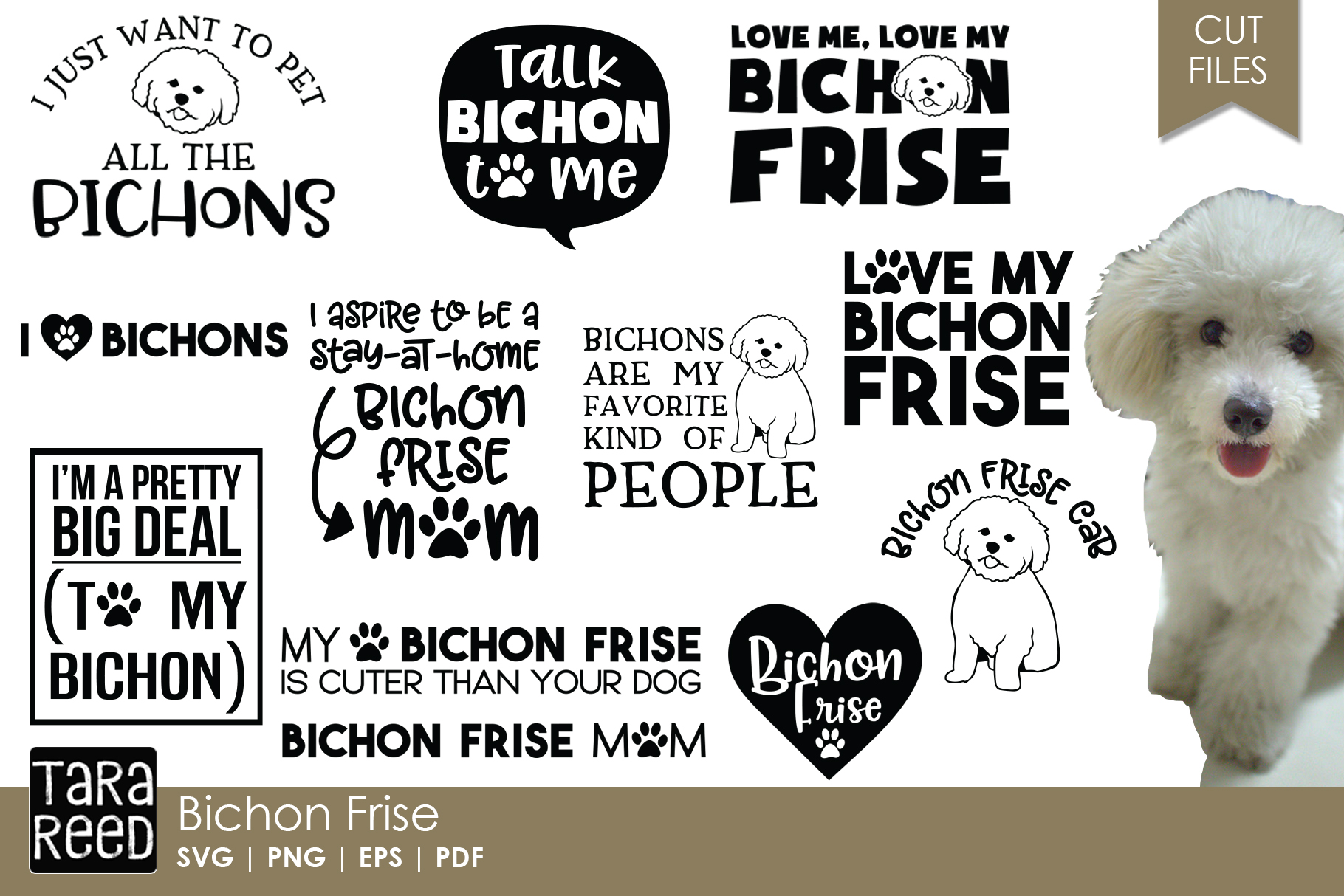 Bichon Frise - Dog Breed SVG and Cut Files for Crafters example image 1