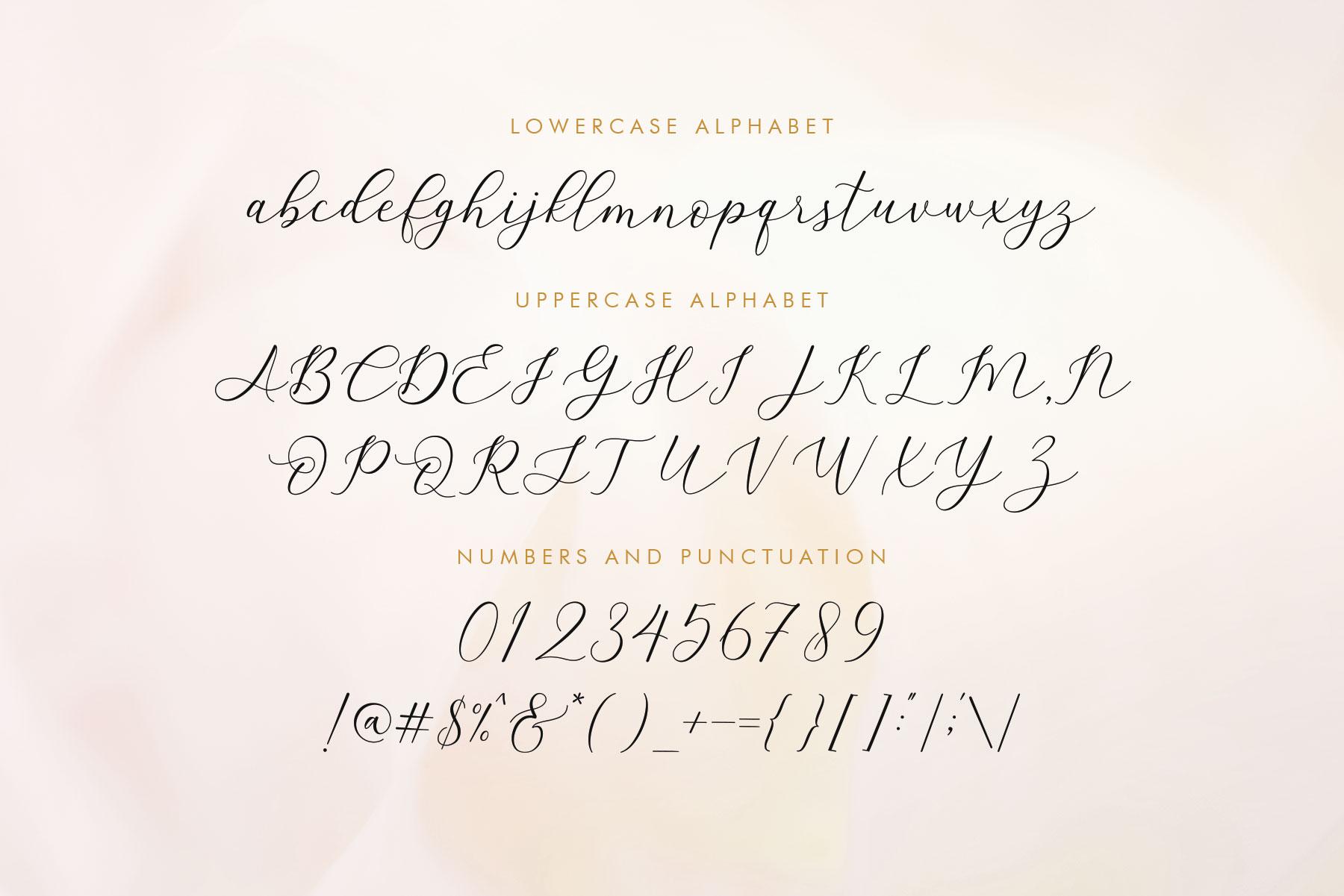 Amstella Modern Calligraphy example image 15