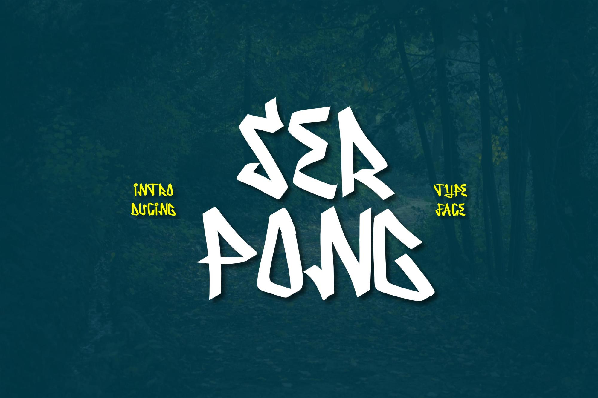 Serpong Typeface example image 1