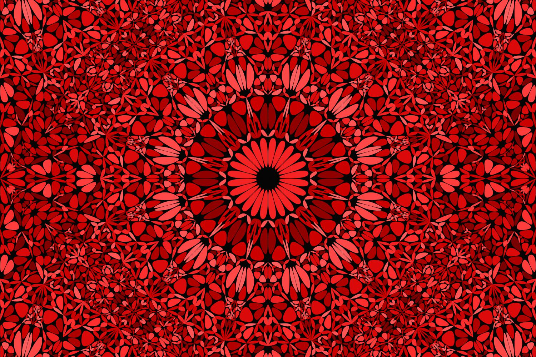 48 Seamless Floral Mandala Patterns example image 13