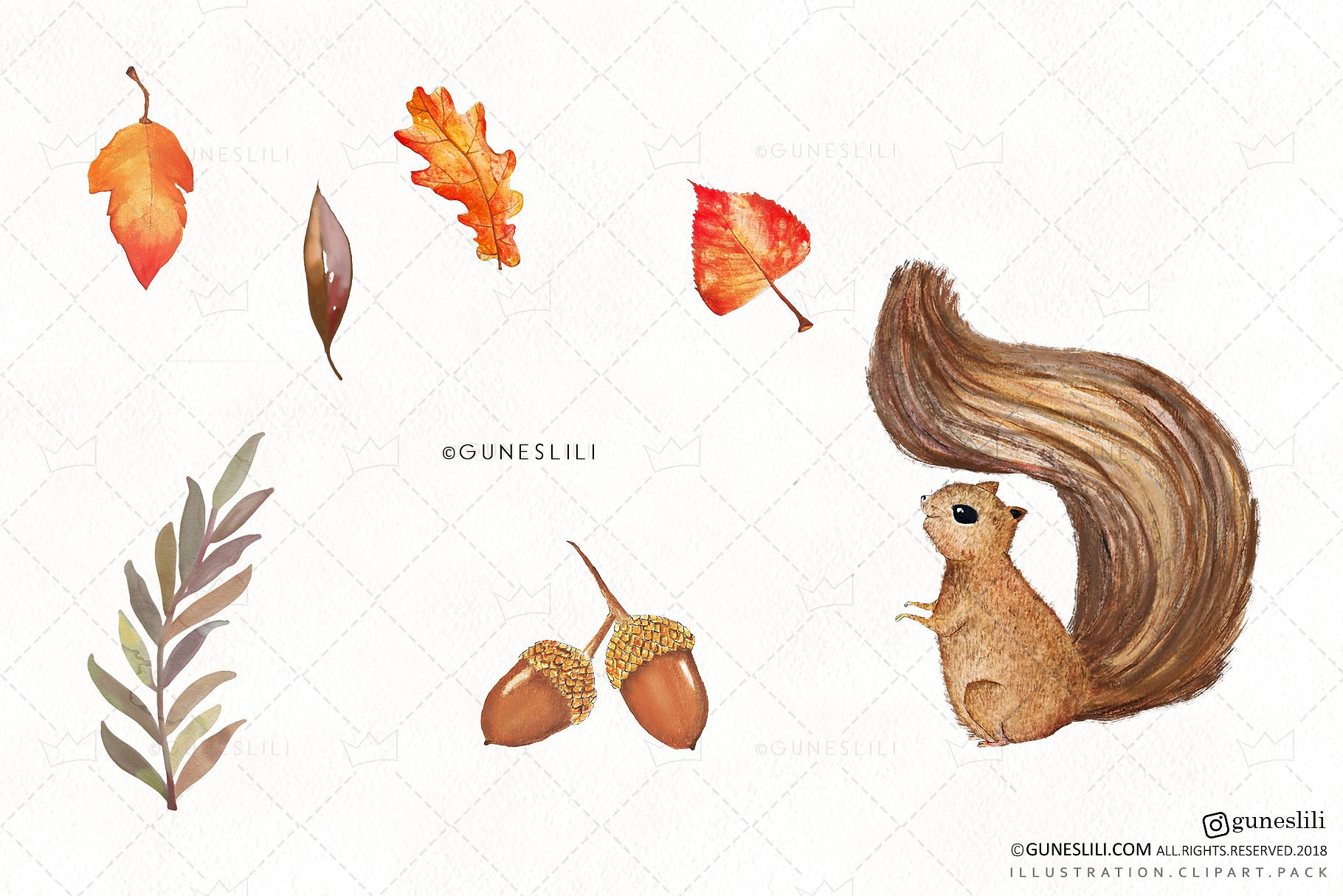 Watercolor Autumn Clipart Hand Painted Fall Graphics example image 3