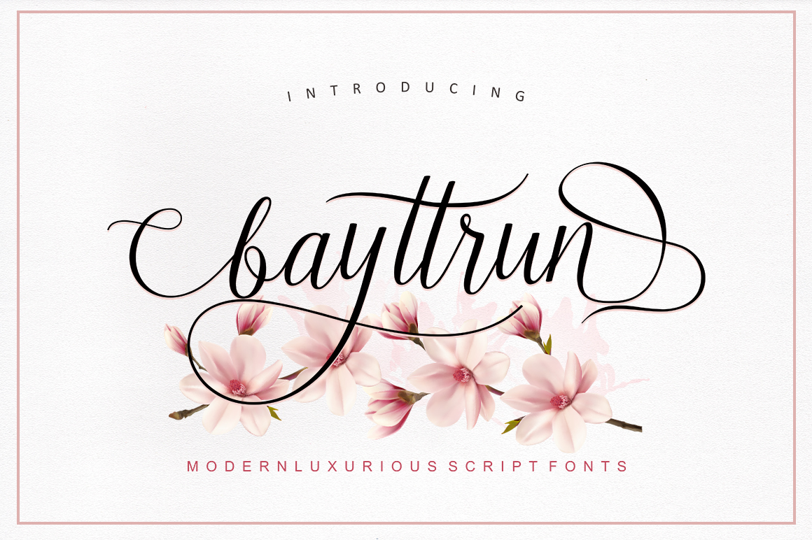 Bayttrun Script example image 1
