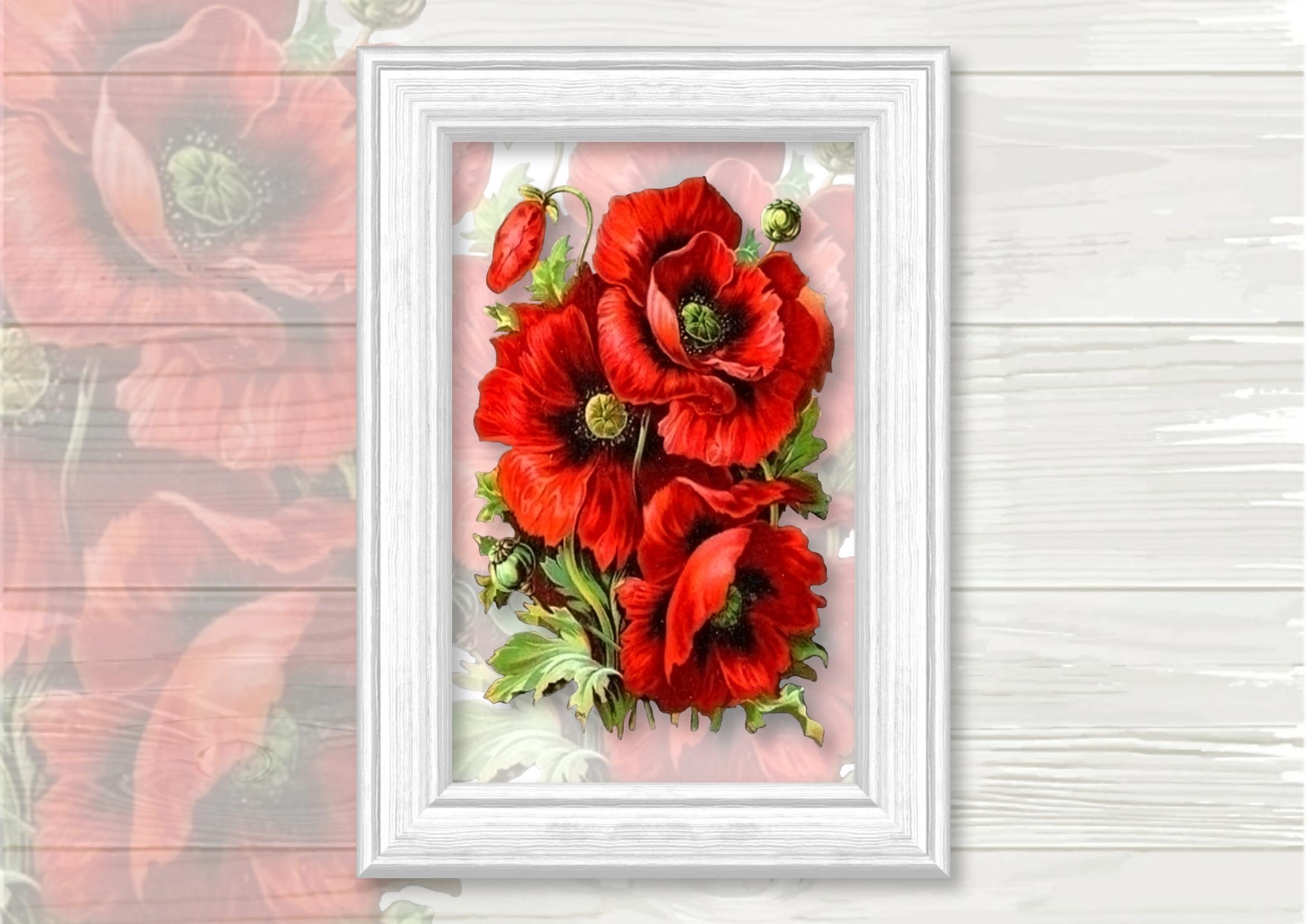Poppy Cluster Bouquet Vignette Clipart example image 2