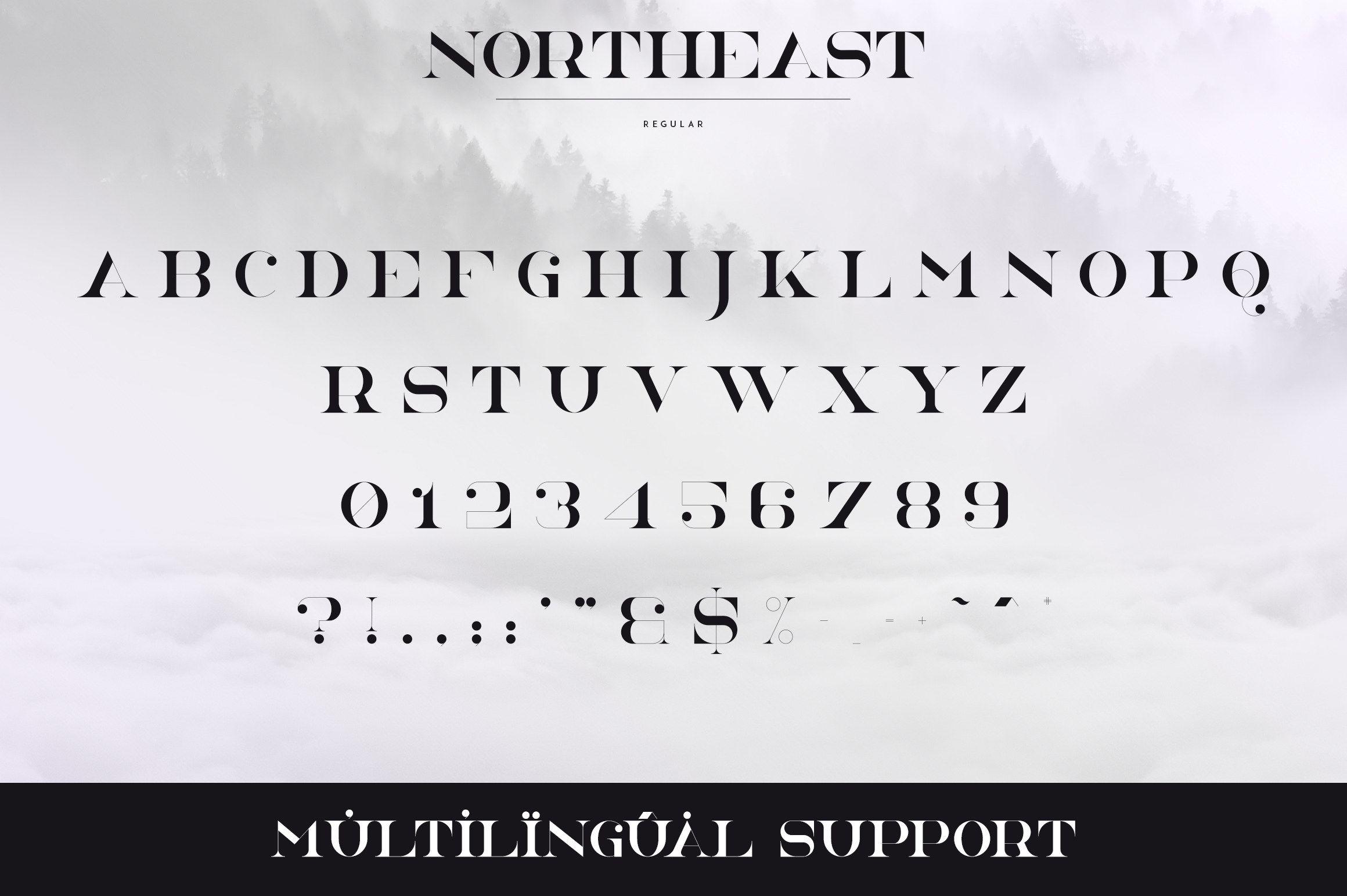 NorthEast - 4 serif fonts example image 8