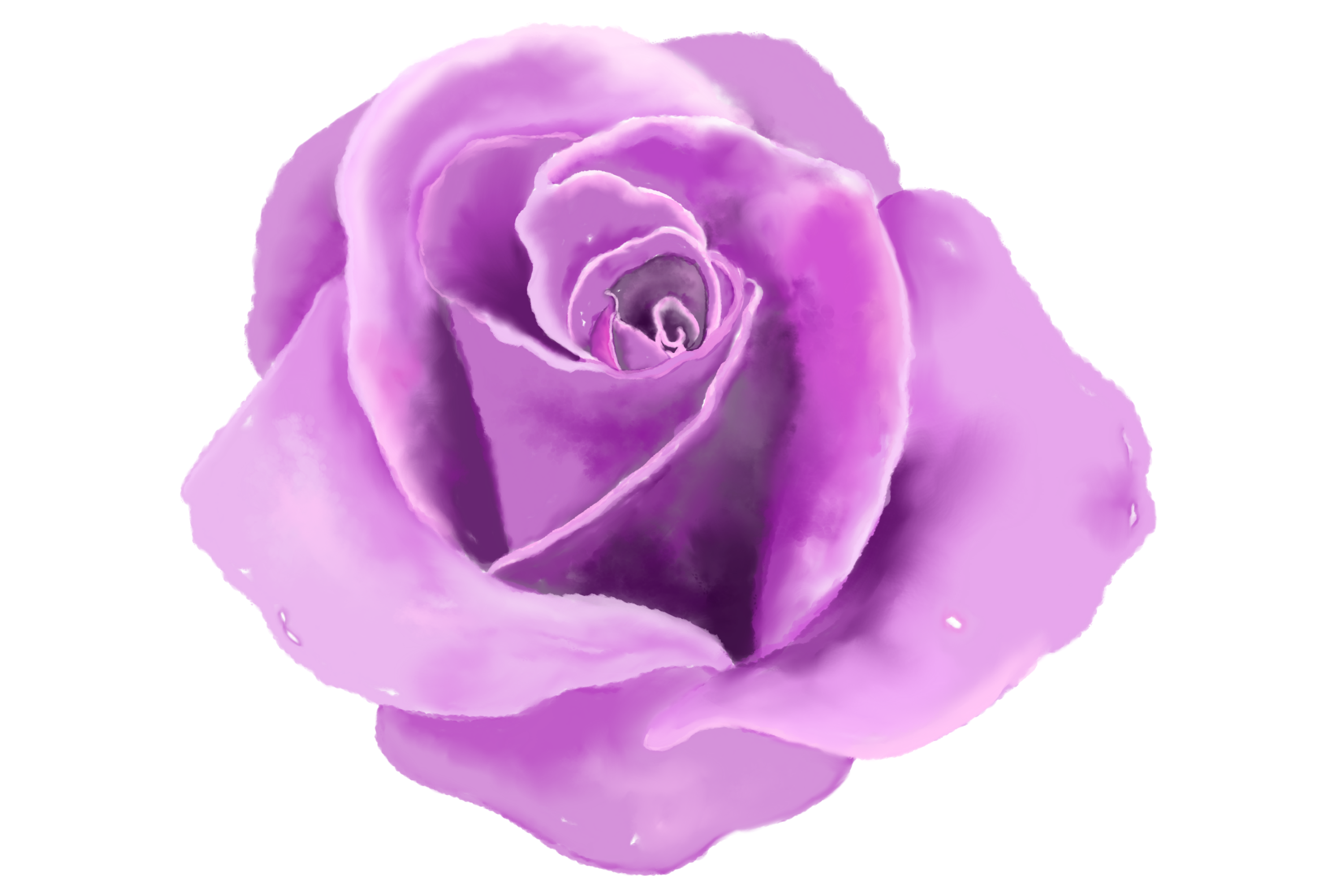 6 Digital Watercolor Roses | Clip Art Illustrations PNG/JPEG example image 5
