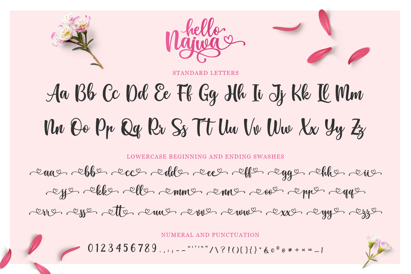 Hello Najwa - Lovely Script Font example image 4