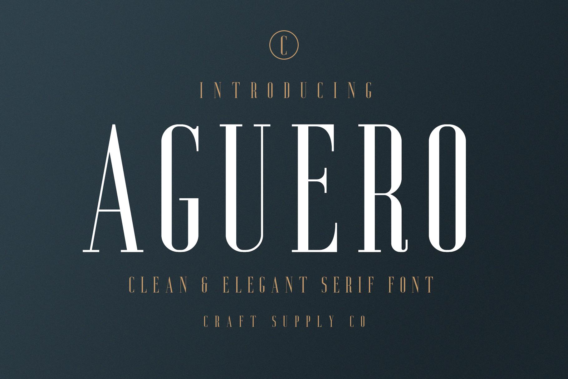Aguero Serif - Clean & Elegant Font example image 1
