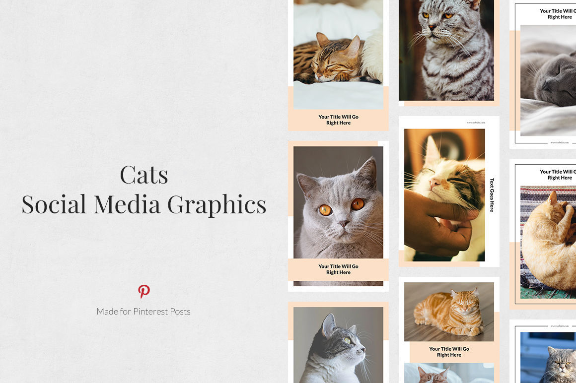 Cats Pinterest Posts example image 1