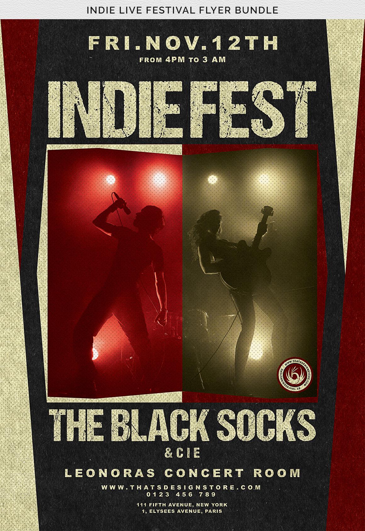 Indie Live Festival Flyer Bundle example image 12
