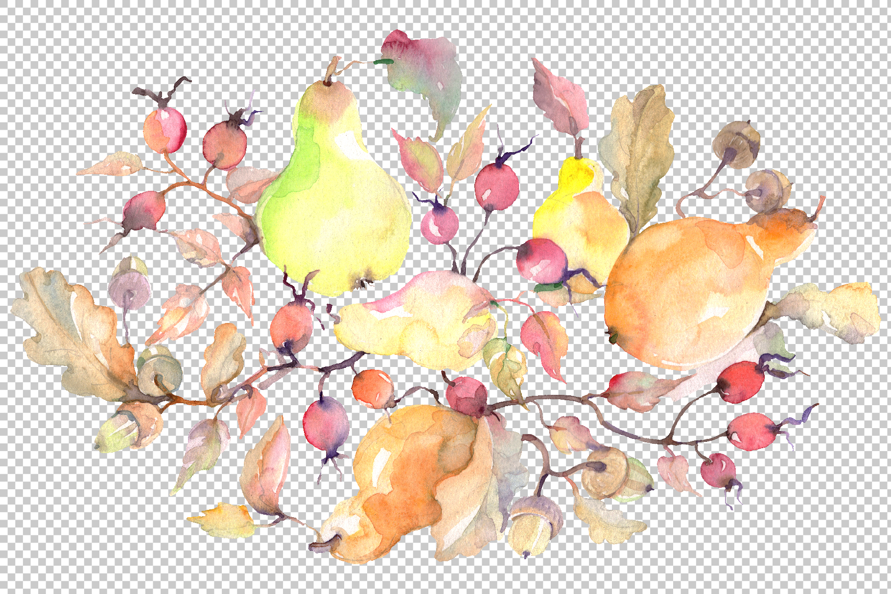 Branch of pears Watercolor png example image 2