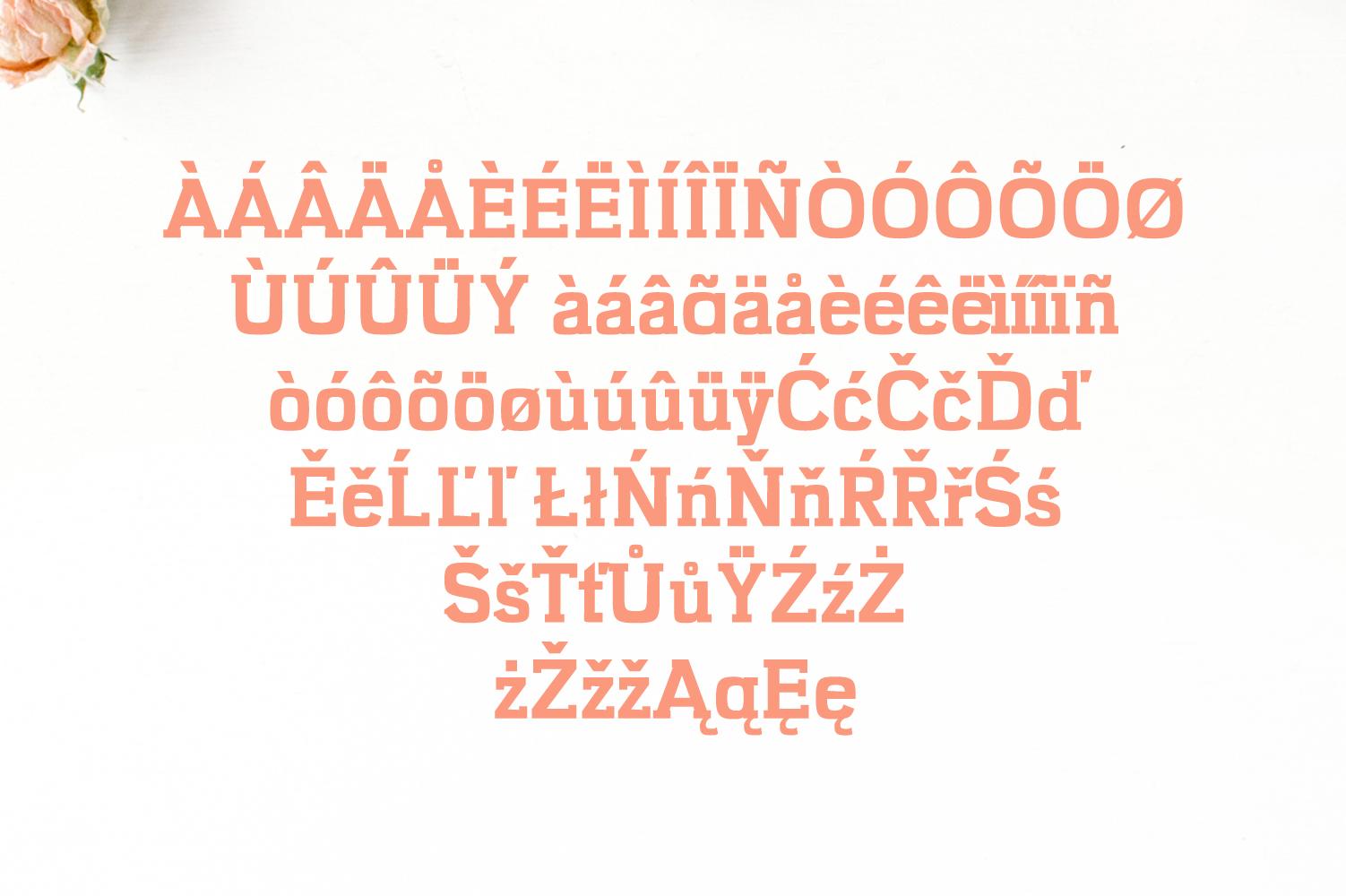Kaayla Slab Serif 4 Font Pack example image 5