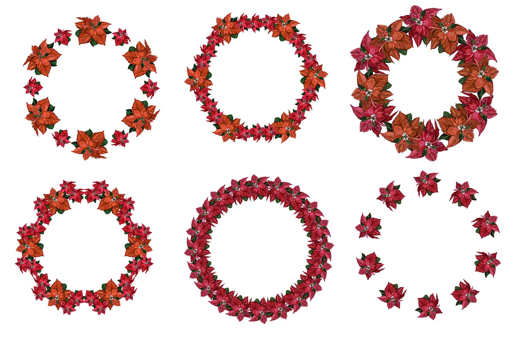 Poinsettia Watercolor Clip Art example image 2