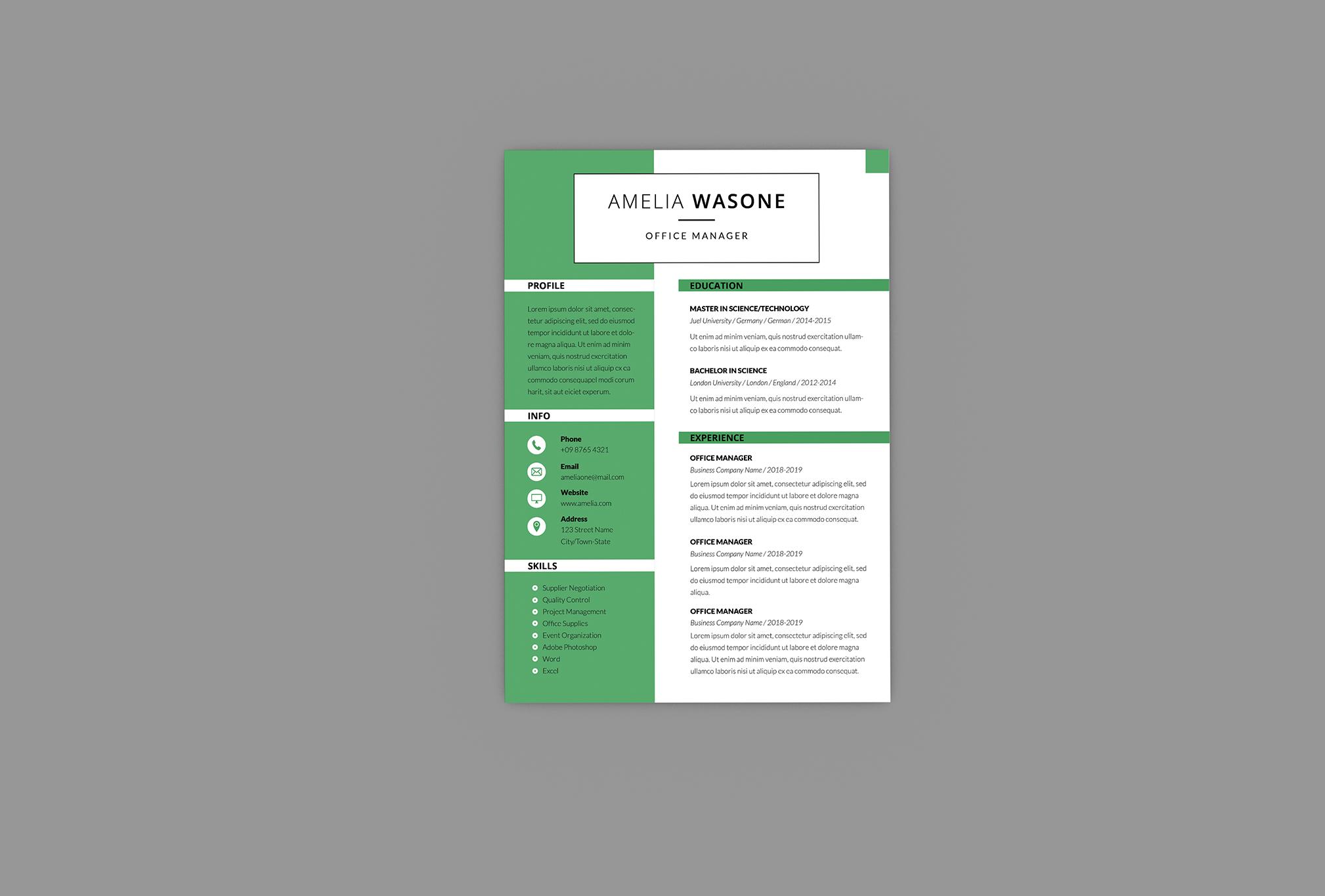 CV Vitality Resume Designer example image 3