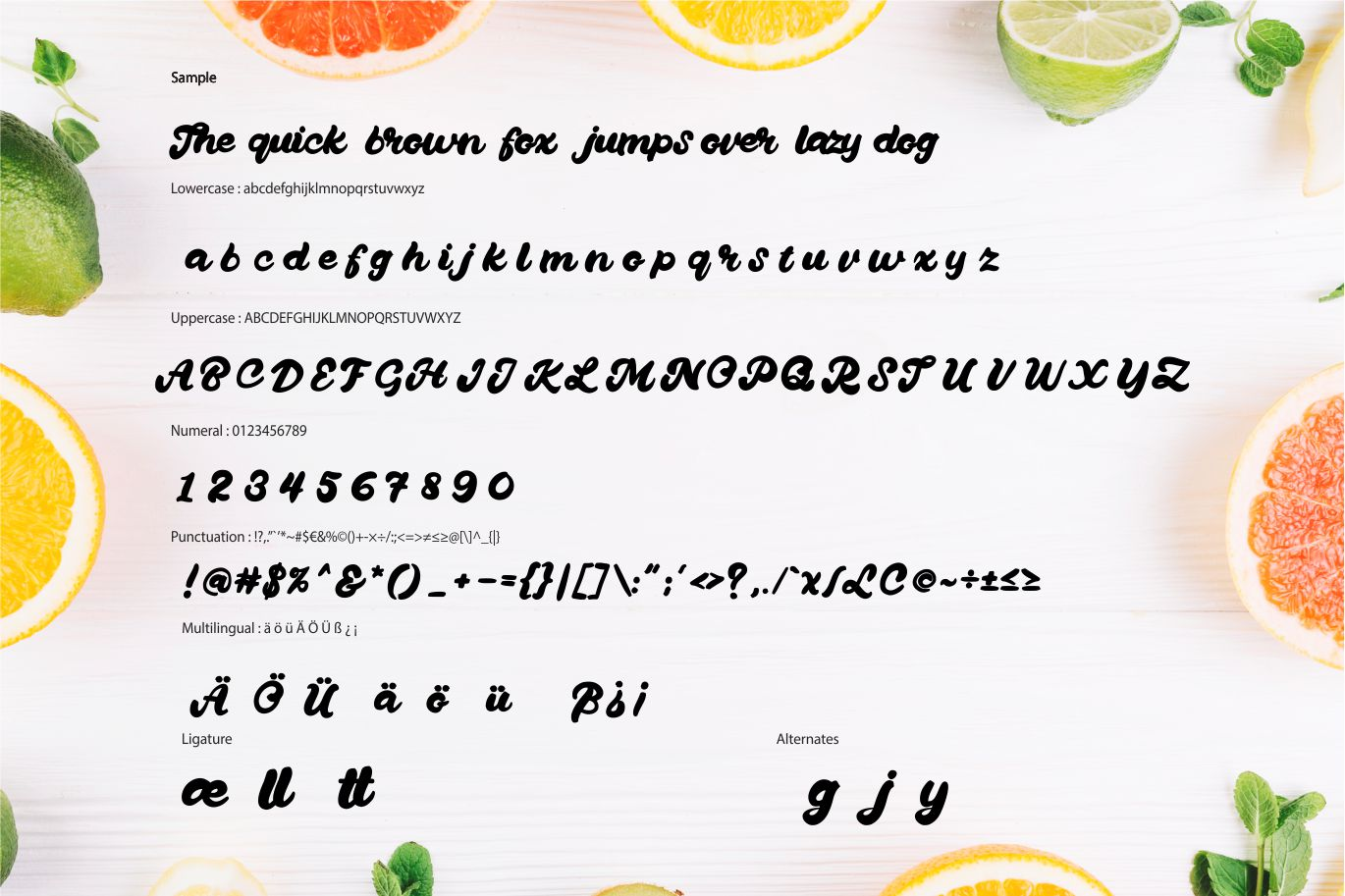 Quanty | Modern Script Bold Font example image 6