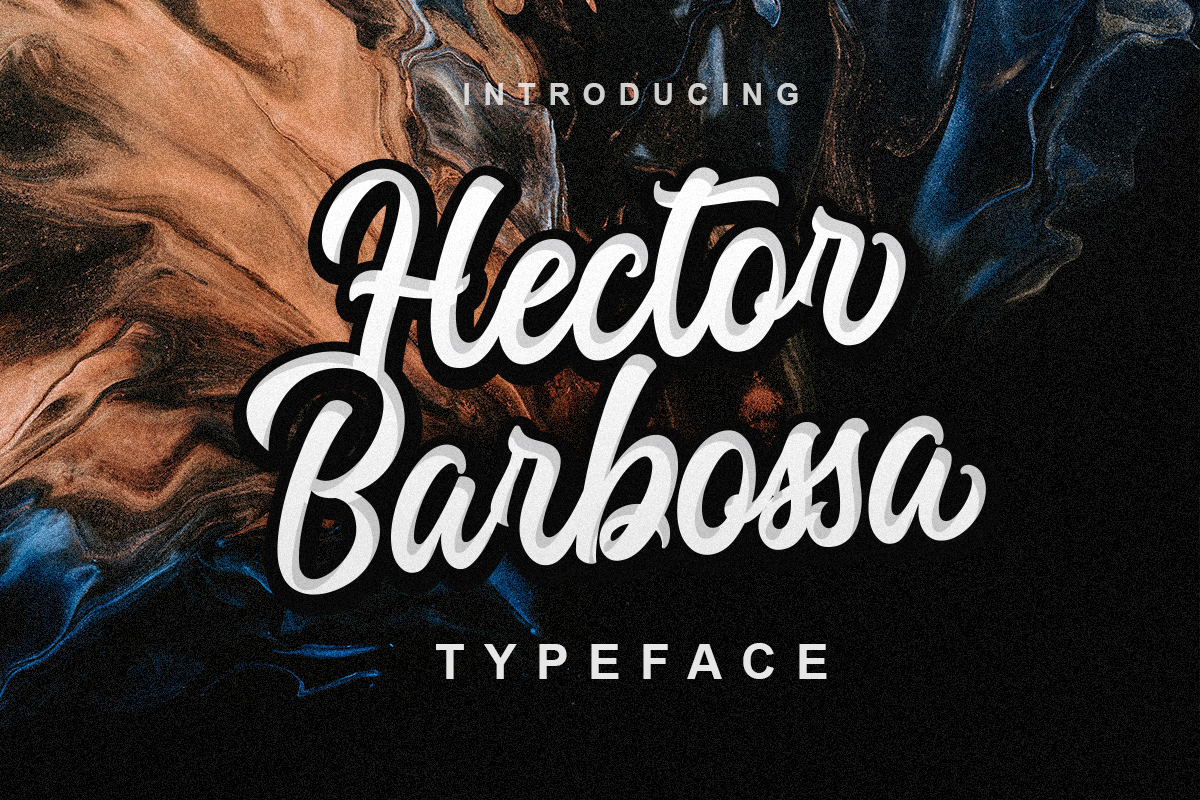 Hector Barbossa example image 1