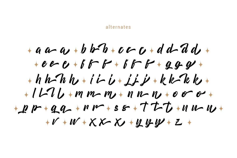 Boomerang Script example image 7