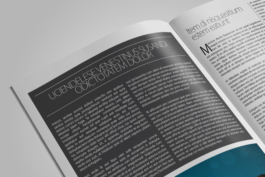 Business Newsletter Template example image 2