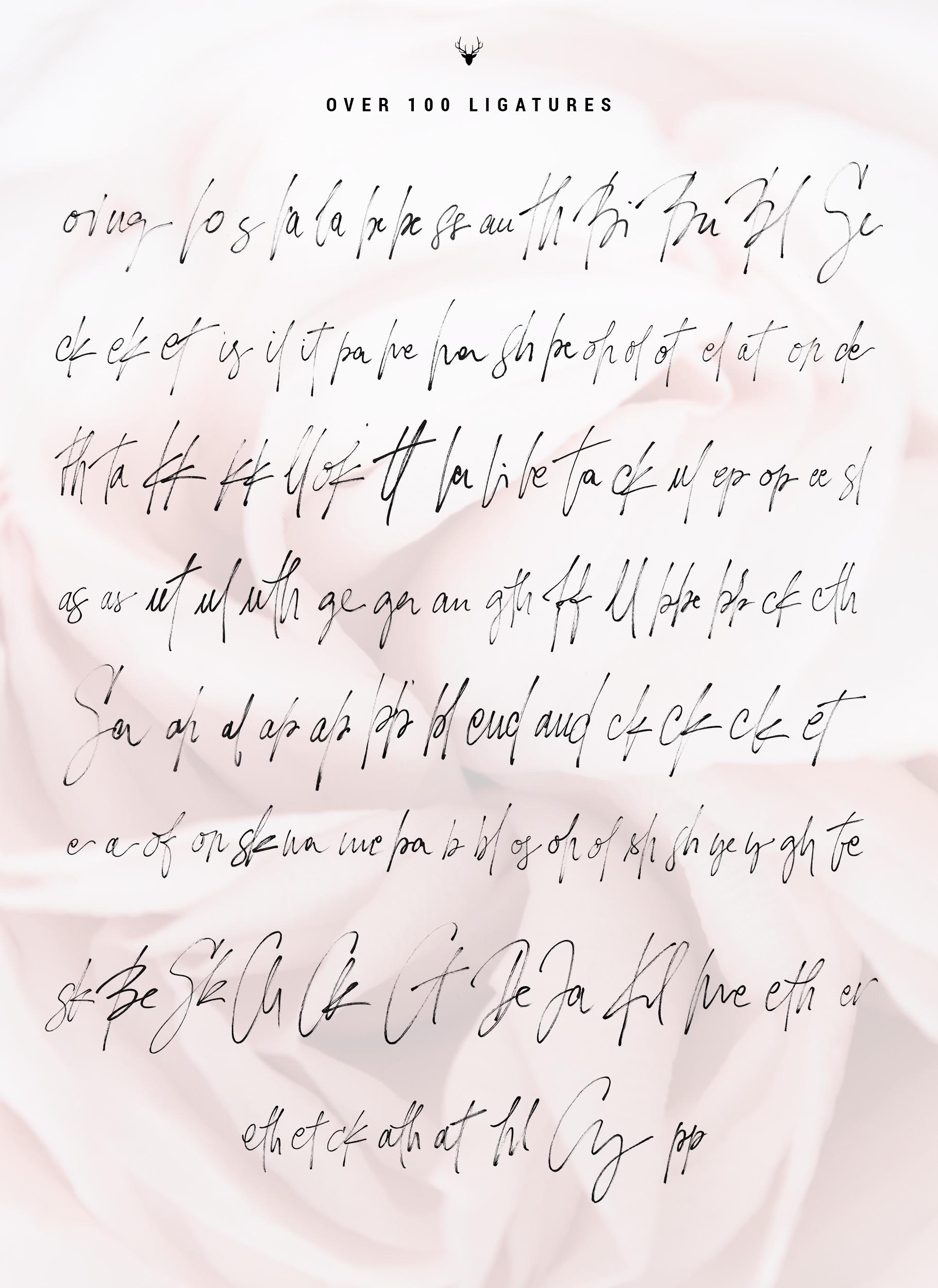 Loving Celine Signature SVG Font Trio - Modern Brush Fonts example image 12