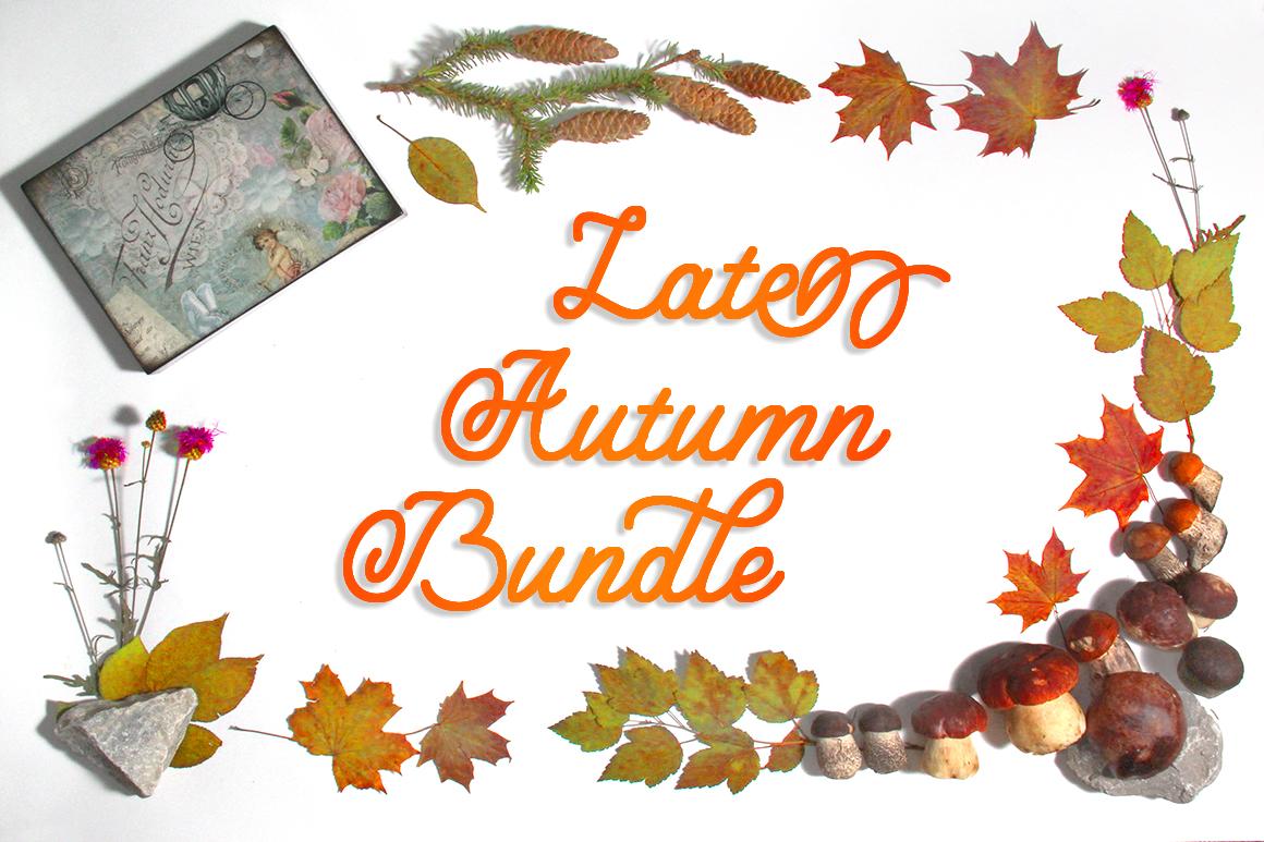 Late Autumn bundle example image 1