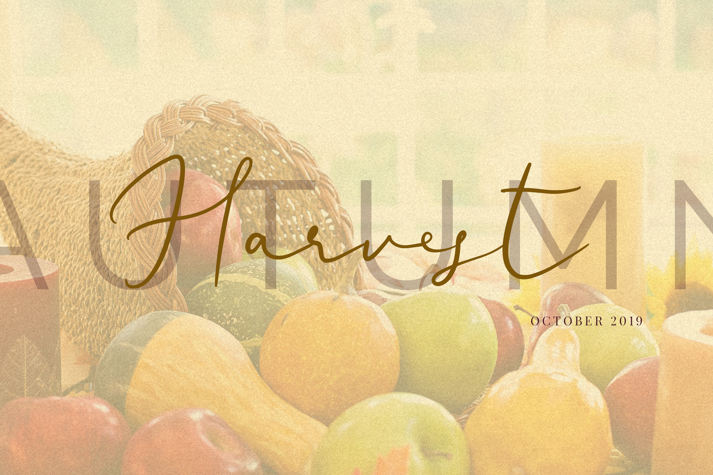 Ametrine, super-casual style font example image 13
