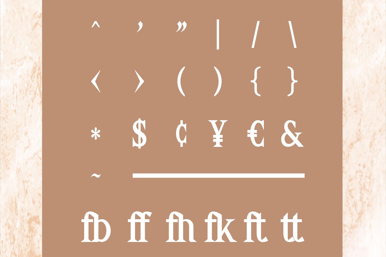 Delia - Regular & Bold Serif example image 6