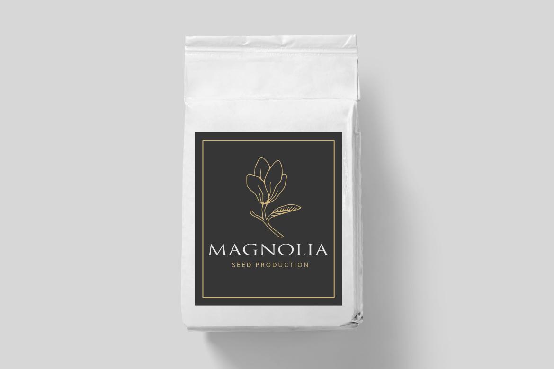 Magnolia Illustration example image 3