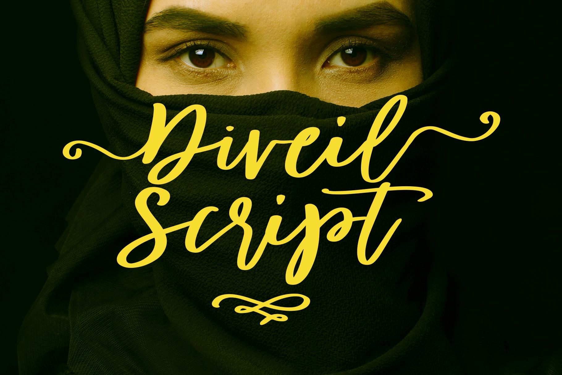 Diveil Script example image 1