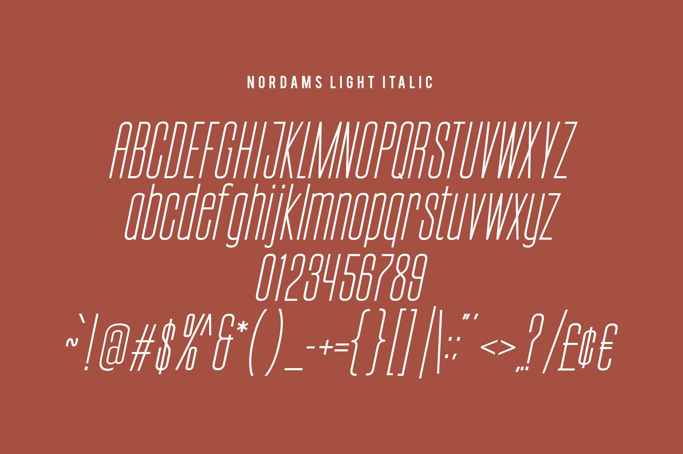 NORDAMS - Sans Serif example image 11