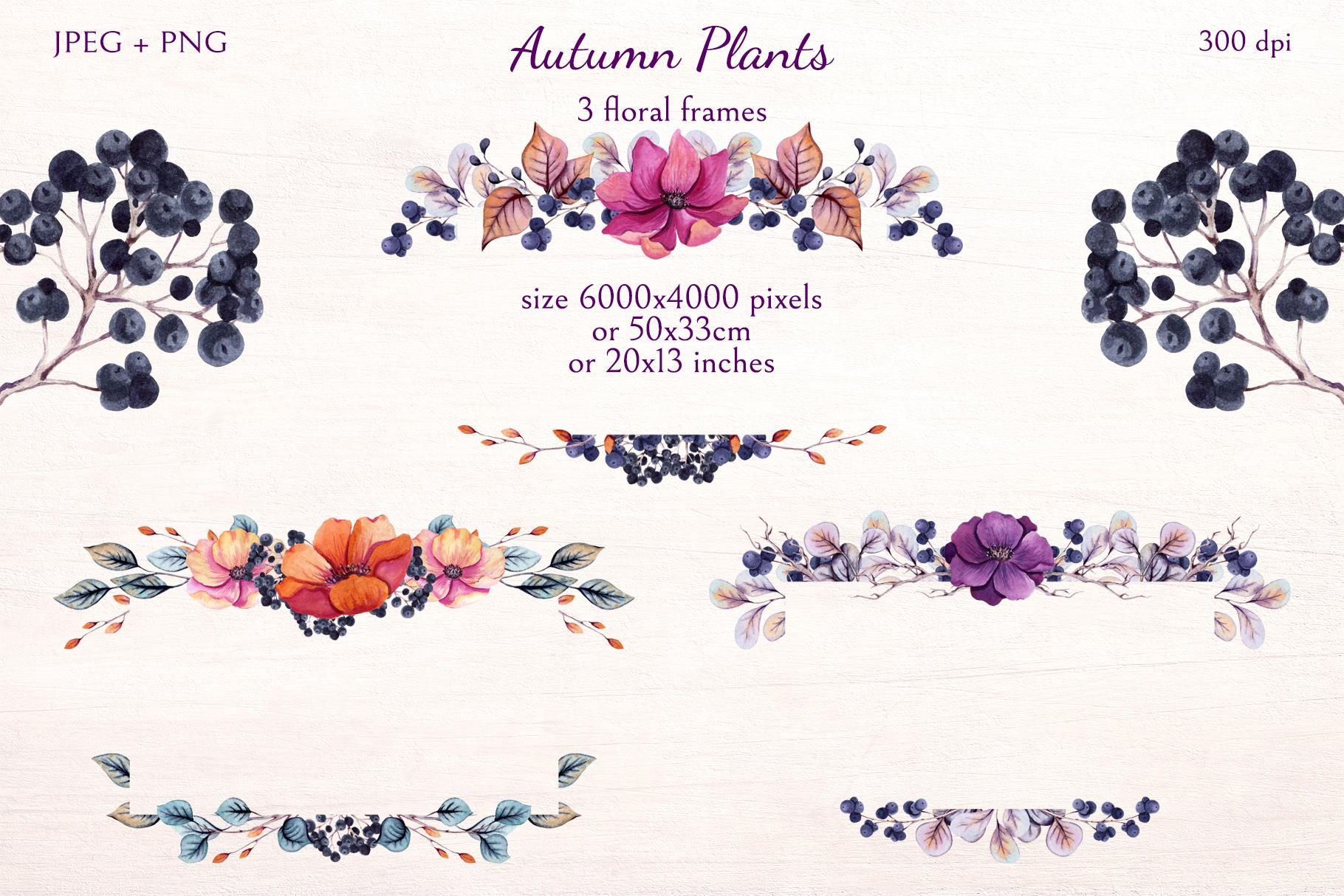 Autumn Plants example image 6