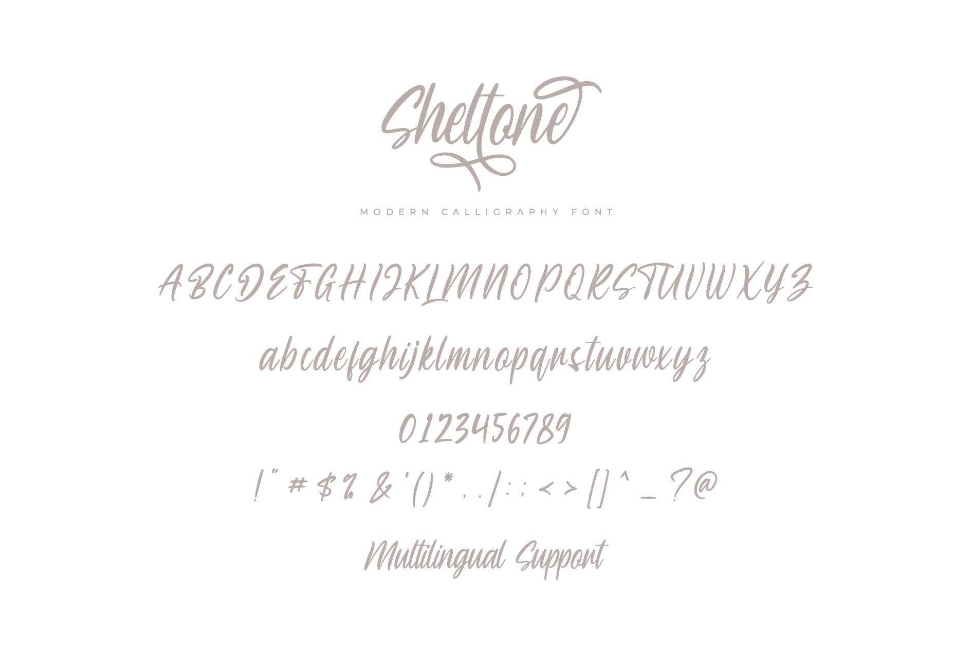 Sheltone - Modern Calligraphy Font example image 8